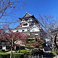 日本。名古屋 / 國寶犬山城