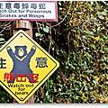 詭異交通標誌