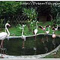 2010.05.15 新竹動物園之旅