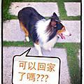 2012-06-24 知足常樂