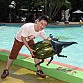 101.8.12新竹一日遊~小叮噹科學遊勞區..南寮漁港