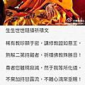 2016-佐欽至尊如意寶 - 珠巴老上師