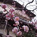 日本鎌倉錢洗辨財天