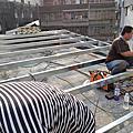 新北市-汐止區-禮門里-里長-不銹鋼浪板鐵皮屋工程-施工日誌