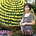 2012.11.25大三元酒樓+士林官邸菊花展