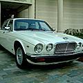 1985年積架Jaguar