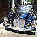 【易特商務網】1966年賓士古董車230S古董車出租拍片