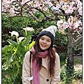 201203278阿里山賞櫻