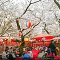 平野神社+京都街景+Kanei (かね井)烏龍麵+鳴海餅本店+超市午餐+錦市場
