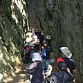森林生態旅遊-墾丁