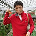 January 2008 - 內湖草莓園