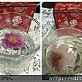 洛安娜Lornrna Rose Vally 玫瑰谷玫瑰花茶  女生的聖品