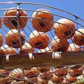2006/10/12 新埔味衛佳曬柿子
