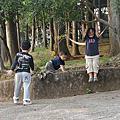 20100320水田營地露營