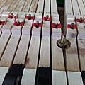 琴鍵跳不起來
