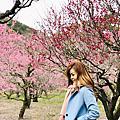 【香川縣高松市】栗林公園梅香滿庭院、上原屋本店讚岐烏龍麵實在好讚