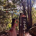 【谷關。鹿谷3天2夜】八仙山森林國家公園。八仙山莊一泊二食。2020秋