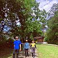 【宜蘭一日健行旅】仁山植物園 健走步道。2020秋