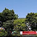 2012草間彌生~日本松本市特展。永遠的永遠的永遠