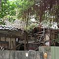 在台北市尋找日式房屋-齊東街