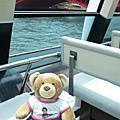 david the bear in tokyo