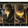 POSTCARD-AUSTRALIA