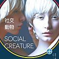 │社交動物(Social Creature)│
