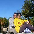 107/12/16泰安國小落羽松、泰安車站、如光山寺池杉林