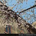 2014春夏-武漢