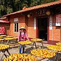 20150103味衛佳柿餅觀光農場