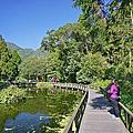 20150124 宜蘭福山植物園+清水地熱