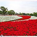 2010.12.30臺北國際花卉博覽會(花博)