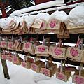 2010春節到東京去看雪~日光