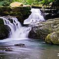 20111010 滿月圓國家森林公園