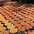 20111029 味衛佳柿餅工廠