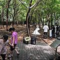 20141004 宜蘭羅東~羅東林業文化園區
