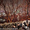 2011年韓國滑雪自由行又來啦~