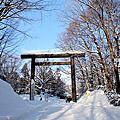 圓山公園~北海道神宮