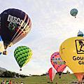 鹿野熱氣球