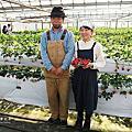 茨城大洗草莓園