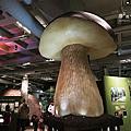 瑞典自然歷史博物館