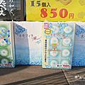 日本常陸海濱公園粉蝶花