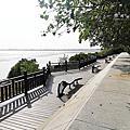七股黑面琵鷺保護區