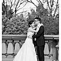 玉米老師的作品集-David &Jessie 澳洲 墨爾本婚禮