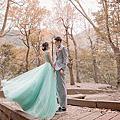 飄逸感婚紗照