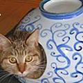 e-TREK日本和風陶器商品(流紋燒)