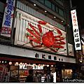 2011 京都大阪