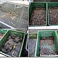 0707 鹽寮龍蝦海鮮餐廳
