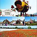 20201119 台中國際花毯節