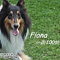 【130330】Fiona遊100號牧場
